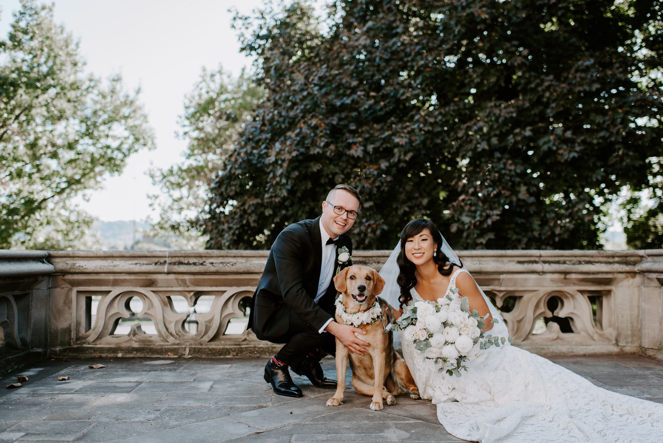 dog on the wedding day